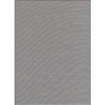 Promaster 10'X20' GRAY Background