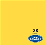 Savage Canary Seamless Background 53in x 36ft