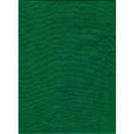 Promaster 6'X10' CHROMA GREEN Background
