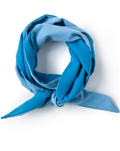 Pool Blue Skinny Neck Scarf