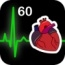 Heart Works 60