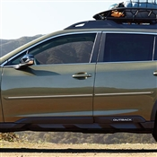 Subaru Forester Painted Side Body Moldings with Chrome Inserts