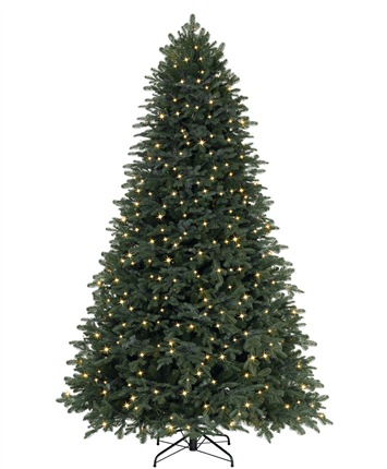 Grand Fir Christmas Tree