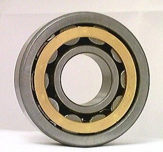 NJ305M Cylindrical Roller Bearing 25x62x17 Cylindrical Bearings