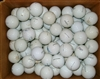100 Titleist Pro V1 and ProVX Shag Used Golf Balls