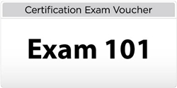 LPI Level 1 Exam 101 Voucher