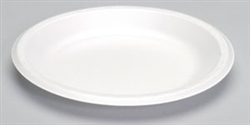 Celebrity Foam White Non-Laminated Plate - 10 in.
