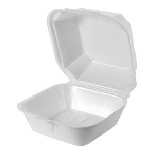 Large Sandwich Foam Hinged Container