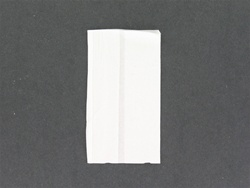 Dispenser Napkin