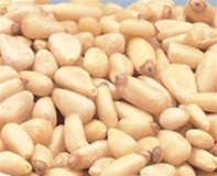 Azar Shelled Raw Pignolias 2 Pound Pine Nuts