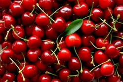 Cherries Maraschino Stems Plastic Large Cherry - 1 Gal.