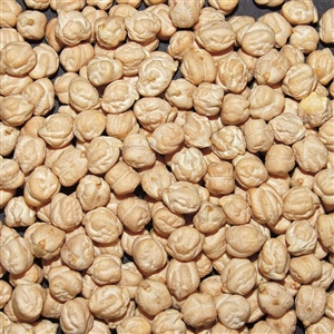 Beans Jack Rabbit Garbanzos - 50 Lb.