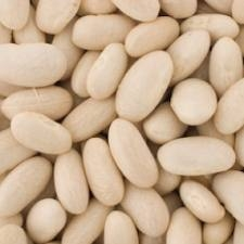 Great Northern Bean 50 Pound