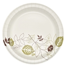 Ultra Heavy Weight Wise Size Pathways Paper Plate - 10.06 in.