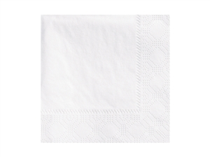 Beverage White Napkin 2 Ply - 9.5 in. x 9.5 in.