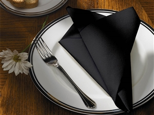 FashnPoint Color In Depth Black Napkin - 15.5 in. x 15.5 in.