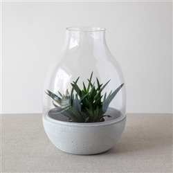 Eden Glass and Concrete Terrarium Candle holder