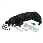 CPR Dog Manikin | Basic CPR Dog Manikin | Basic Sanitary CPR Dog Manikin | Life/form Basic Sanitary CPR Dog Manikin | Life/form LF01156U Basic Sanitary CPR Dog Manikin On Sale