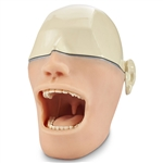 Oral Anesthesia Manikin without Metal Skull and Light or Sound Sensors