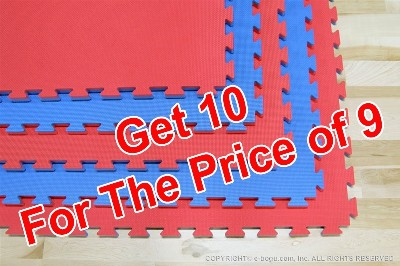 "Premium Single Thickness Martial Arts Dojo Mat 1'' x 40"" X 40"" (25 MM x 100 CM X 100 CM) Red and Blue Reversible"