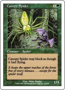 Canopy Spider - Seventh Edition - Common