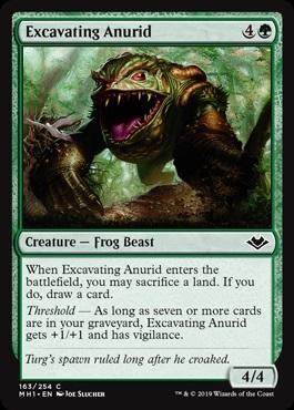 Excavating Anurid - Modern Horizons - Common