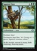 Squirrel Nest - Modern Horizons - Uncommon