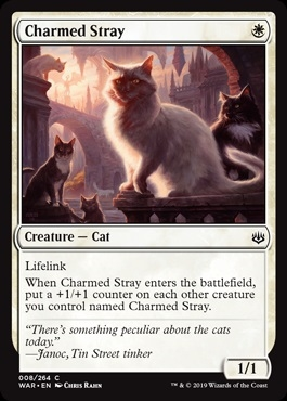 Charmed Stray - War of the Spark - Common