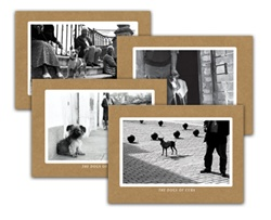 Dogs of Cuba Note Card Set
