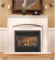 GD33NR Napoleon Direct Rear Vent Gas Fireplace