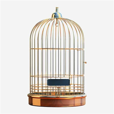 Bird Copper Cage