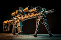 SPECIAL PURPOSE RIFLE (SPR)