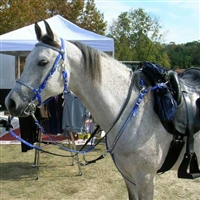 Biothane Bridle, Reins & Breast Collar Set for Sale!