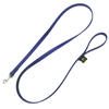 Beta Biothane® Dog Leash for Sale!