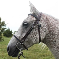 Beta Biothane® English Bridle for Sale!