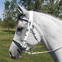 Full Halter Bridle with Add On Headstall for sale