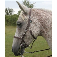 Beta Biothane® Halter Bridle - No Brow for Sale!