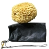 Large Natural Sea Sponge in a Bag for Sale!