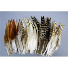 Hair Extensions - Mixed Feathers