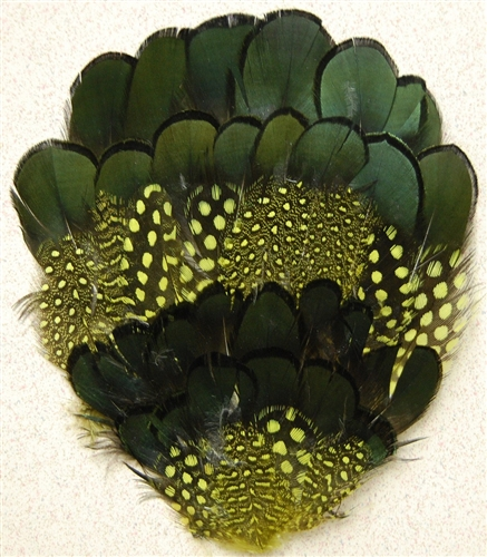 Natural Black Pheasant/Guinea Pads