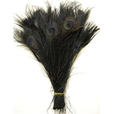 "Peacock Tails 10""-12"" Bleached Color"