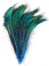 Peacock Swords Dyed Color 20-25""