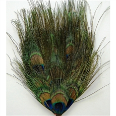 Pads - Peacock Hairy Eyes