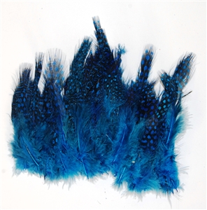 "Guinea Plumage 1""-5"" (100 Pcs per bag)"