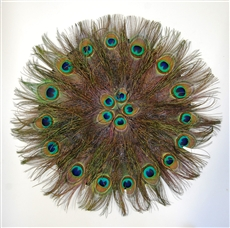 Feather Placemat - Natural Peacock