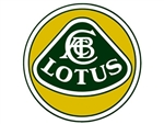 1974 - 76 Lotus Elite 502 Main Wiring Harness
