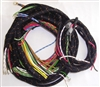 Main Wiring Harness (B,B)