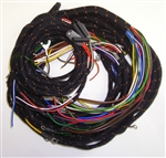 Main Wiring Harness (P,B)
