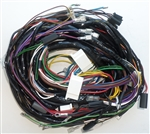 DBS Main Harness