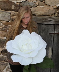Giant Paper Rose Flower - Oversized Paper Roses